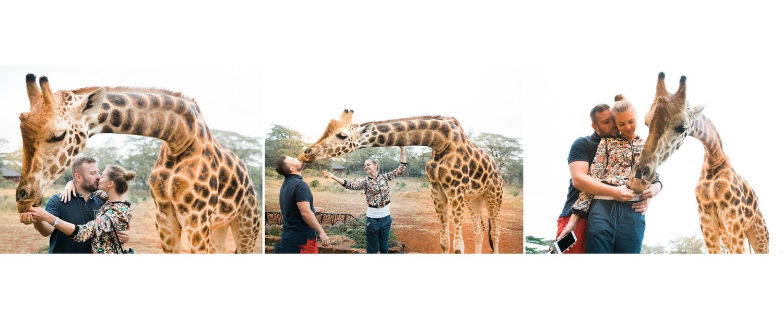 Giraffe Manor Завтрак с Жирафами в Африке